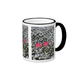 Poppy-Daisies Coffee Mug