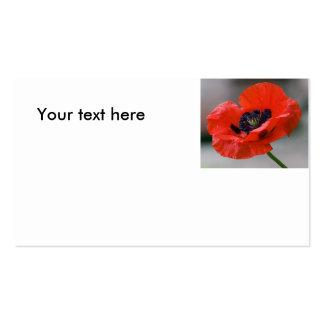 Poppy Design Business Card