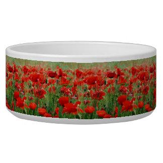 Poppy Field Bowl