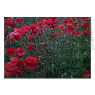Poppy Field Card