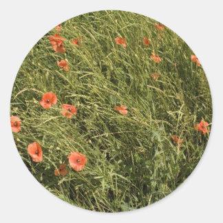 Poppy Field Classic Round Sticker