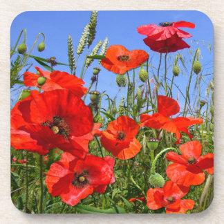 Poppy Field ~  Coasters