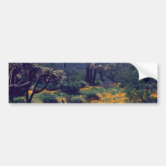 Poppy Field flowers Bumper Stickers