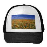 Poppy field  flowers mesh hat