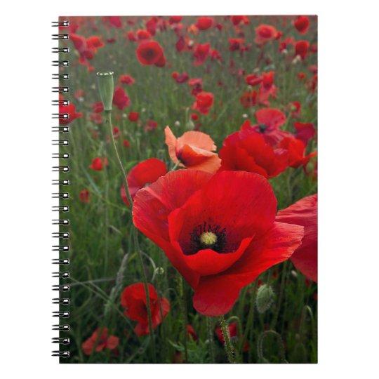 Poppy Field Notebook