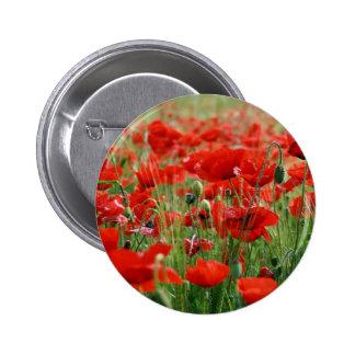 Poppy Field Pinback Button