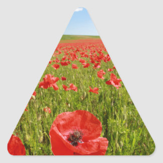 Poppy field - Stunning! Triangle Sticker