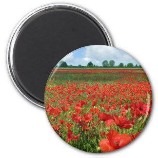 Poppy Fields 2 Inch Round Magnet