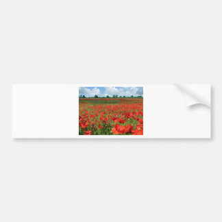 Poppy Fields Bumper Stickers