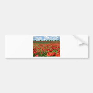 Poppy Fields Car Bumper Sticker