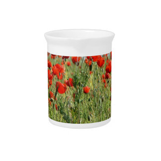 Poppy fields red flowers Romania country side Pitcher