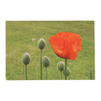 Poppy flower and buds placemat