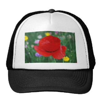Poppy flower and meaning mesh hat