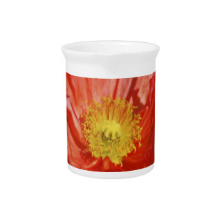 Poppy flower and meaning pitchers