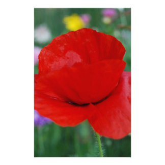 Armed forces stationery zazzle - Yellow poppy flower meaning ...