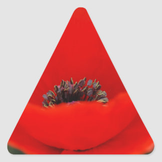 Poppy flower and meaning triangle sticker