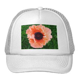 Poppy Flower Baseball Hat