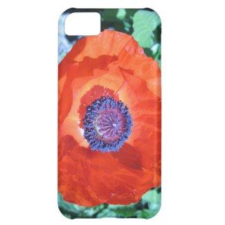 Poppy Flower Cover For iPhone 5C