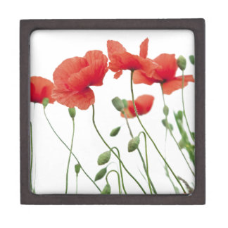poppy-flower gift box
