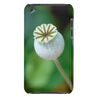 Poppy Flower Head Seed, Western Cape Barely There iPod Cover