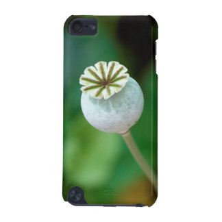 Poppy Flower Head Seed, Western Cape iPod Touch (5th Generation) Cover