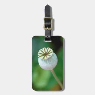 Poppy Flower Head Seed, Western Cape Luggage Tag