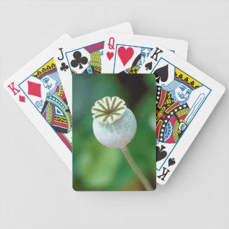 Poppy Flower Head Seed, Western Cape Bicycle Card Decks
