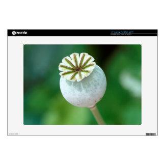 """Poppy Flower Head Seed, Western Cape Skin For 15"""" Laptop"""