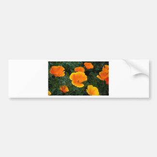 Poppy Flowers Bumper Sticker