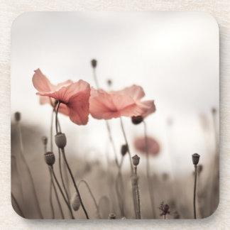 Poppy Flowers Drink Coasters
