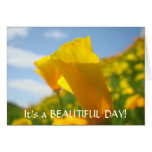 POPPY FLOWERS Greeting Cards Beautiful Day POPPIES