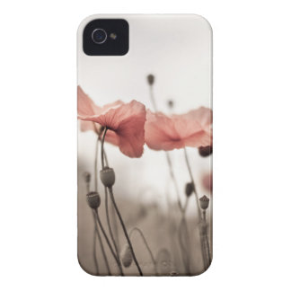 Poppy Flowers iPhone 4 Case-Mate Case