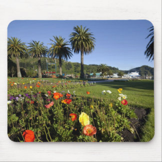 Poppy flowers, New Zealand Mouse Pad