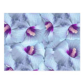 Poppy Flowers Pattern Postcard