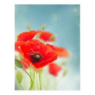 Poppy flowers postcard