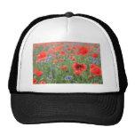 Poppy flowers trucker hat
