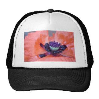 poppy mesh hat