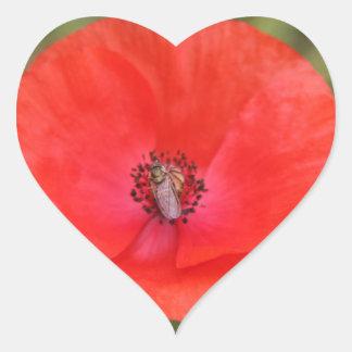 poppy heart sticker