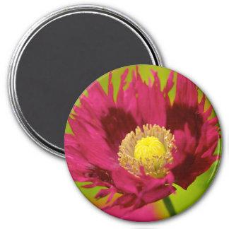 Poppy II Magnet