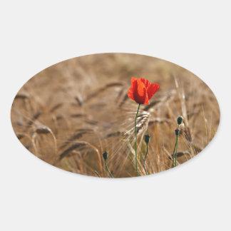 Poppy in a cornfield oval sticker