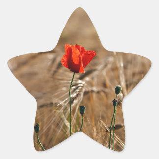 Poppy in a cornfield star sticker