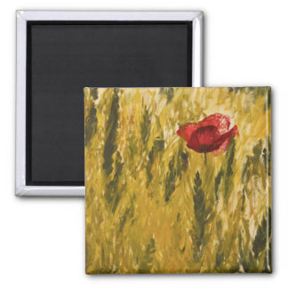 Poppy in the Wheat Field Magnets