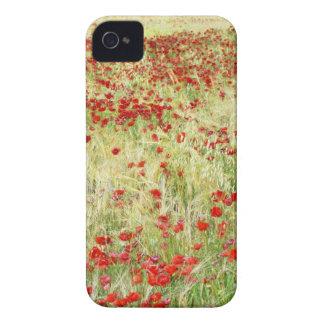 Poppy iPhone 4 Cover