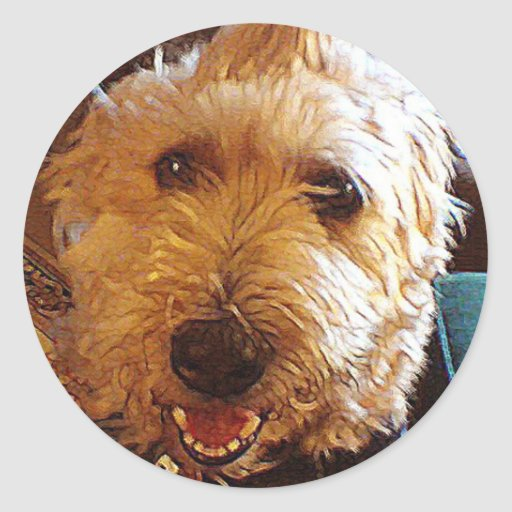 Poppy Labradoodle Mutt Dog Sticker
