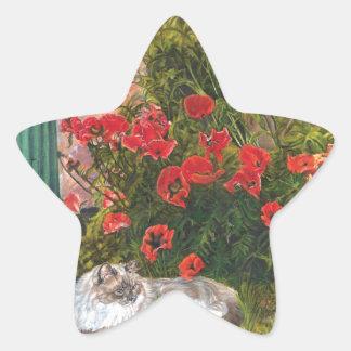 Poppy Lane Star Sticker