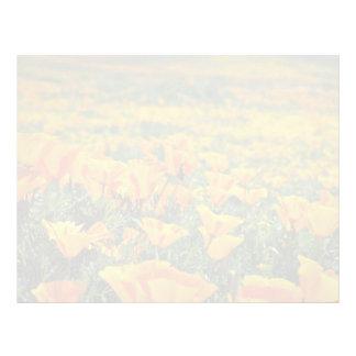 Poppy macro  flowers custom letterhead