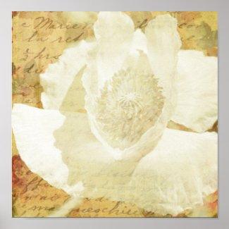Poppy Marie print