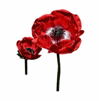 Poppy Mother and Child Photo Cut Out
