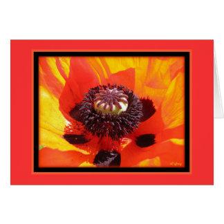 Poppy- notecards card
