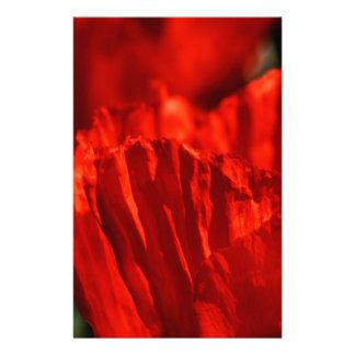 Poppy Papeleria